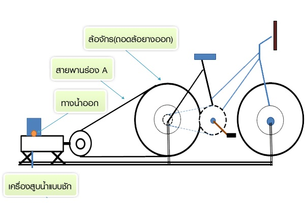 bicyclepnum