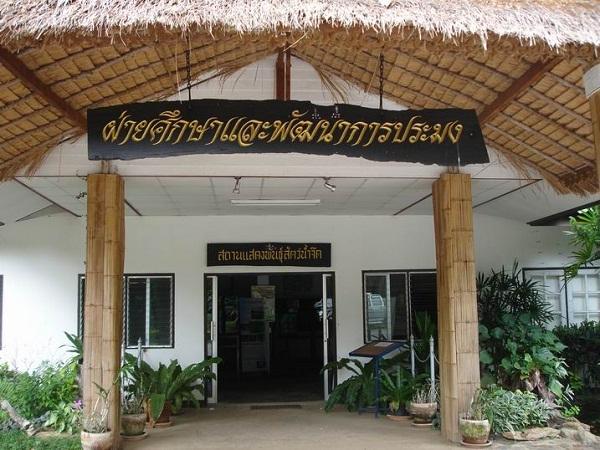 hoyhongkaipramong