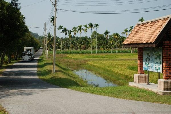 pikulthongway