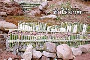 thamhingai